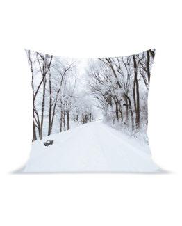 snow-road-pillow-2
